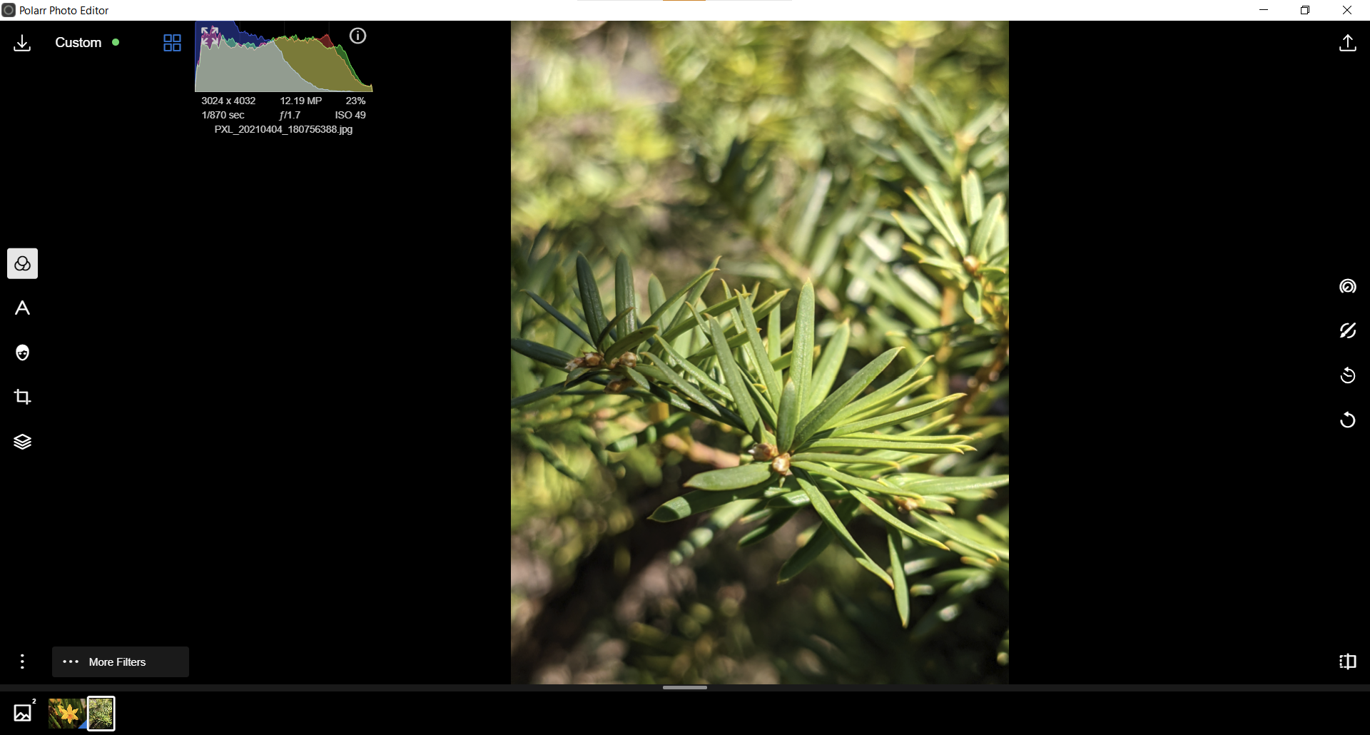 Making Polarr Filters/Presets